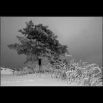 05.  Zimsko odelo