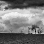 08 - Pred oluju 131331