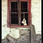 13 Okiceni  prozor