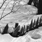 -46 Tarabe,  Vlasinsko jexero, (1989)-800