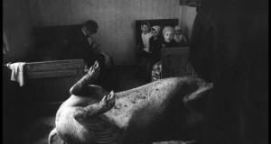 b_800_600_0_0___images_stories_gradiva_slike_ciglenecki_stojan_kerbler_koline__1977