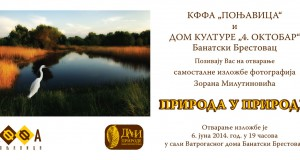 Pozivnica-Zoran-M