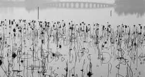 "René Burri: ""Kunming Lake"" Beijing, China, 1964. In the collection of René Burri / Magnum Photos"