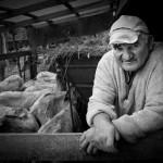 Golub Branislav - 19 Portret XXI_resize