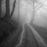 Savovic Milenko - 16 - Slike u magli 8_resize