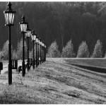 Valo Jan - 03_Setnja_resize