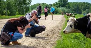 Model-Milka-iz-Svajcarske-na-foto-safariju-u-Ivanovu