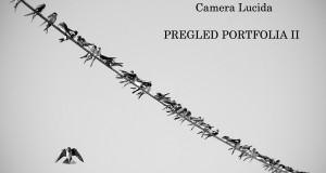 PORFOLIO II