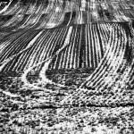 26-Snežne linije