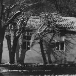 30 Kuca i senke, 1975