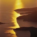 52 Zlatna obala, 2004