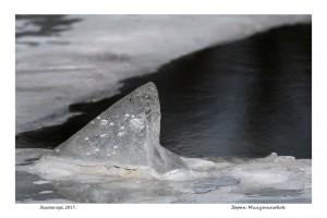 Ledeni vrh