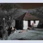 Jesen u selu