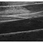 12.Zlatibor 19
