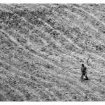 13.U polju