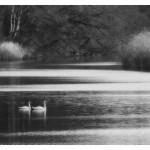 3.Ljubav na vodi