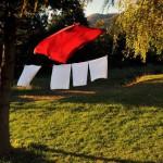07 Purger Zoran_03 - Landscape_2010_ Medvednik-1000